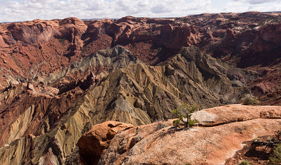 The Crater at Upheaval Dome.