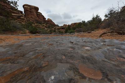 Creekbed