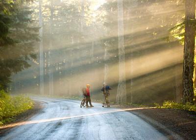 Kissed by the sun, Mt. Rainier NP