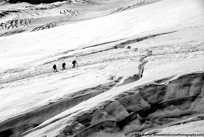 Climbers headed to the cravasse, Emmons Glacier, Mt. Rainier National Park, WA