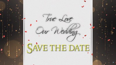 Bryan & Jasmyne  save the date
