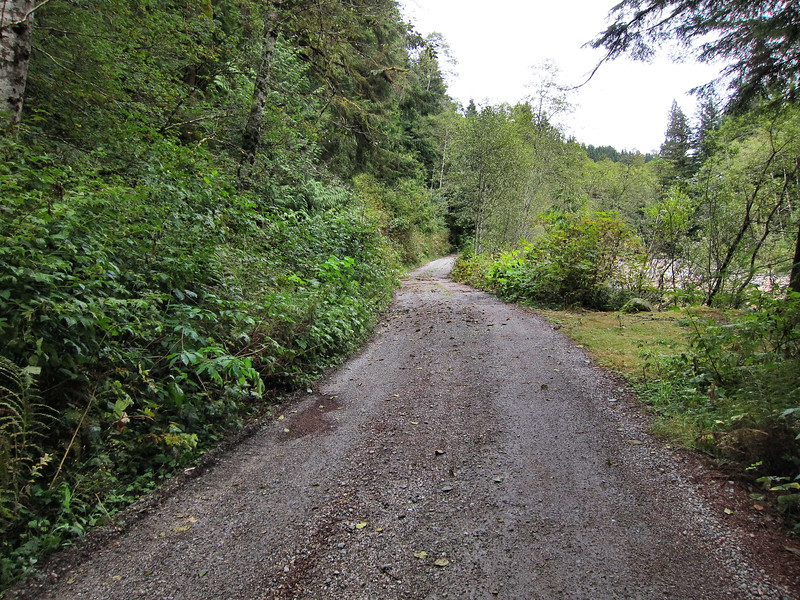 The trail is more or less flat as it follows the Seymour River up the valley deeper into the Seymour Conservation Area.