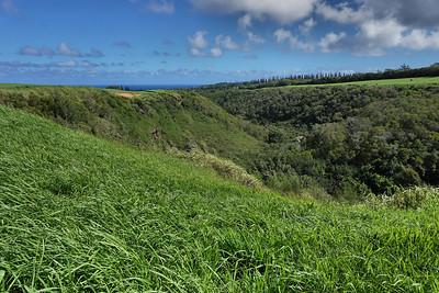 Kapalua Coastal Trail - Mahana Ridge