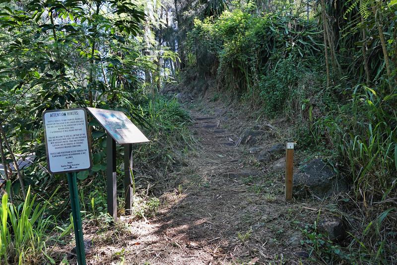 Mahana Ridge Trailhead at DT Fleming Beach