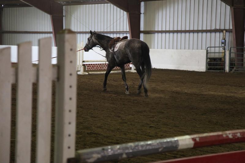 Equestrian Hunt Seat