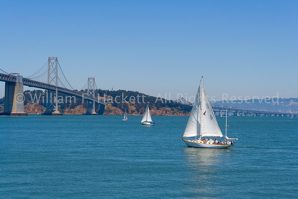 Bay Bridge Sailing0475