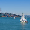 Bay Bridge Sailing0475