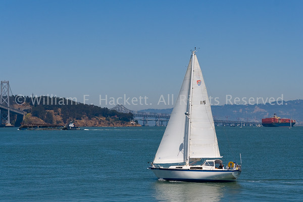 Bay Bridge Sailing0474