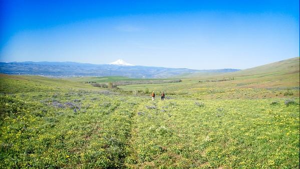 Dalles Mt Ranch Loop © Chiyoko Meacham