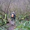The Dick Thomas Trail. <FONT SIZE=1>© Chiyoko Meacham</FONT>