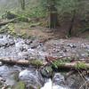 Cedar Creek <FONT SIZE=1>© Chiyoko Meacham</FONT>
