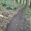 New trail maintenance on the Cedar Falls Trail.