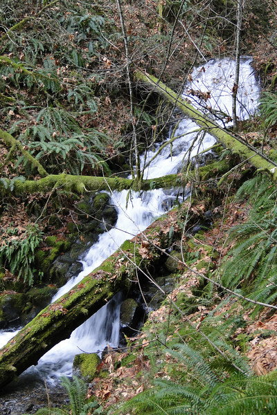 Lower Gable Falls.