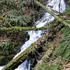Lower Gable Falls.
