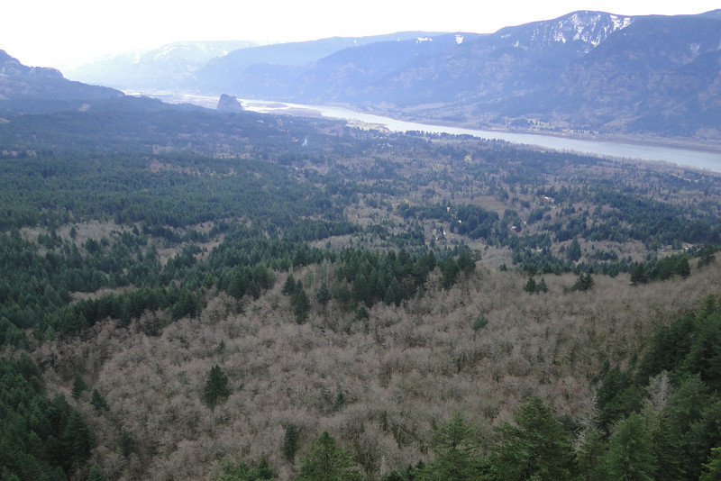 Looking East from a View Point on the way to the Archer Mountain Summit.