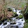 Gable Creek below Lower Gable Falls