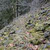Heading down an old Talus Slope trail