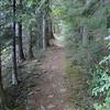 Multnomah Creek Way