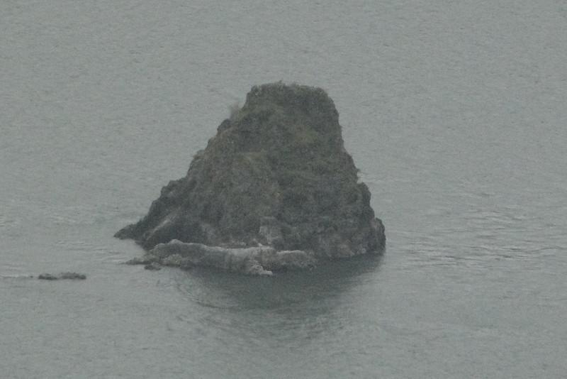 Phoca Rock