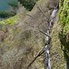 Above Cape Horn Falls
