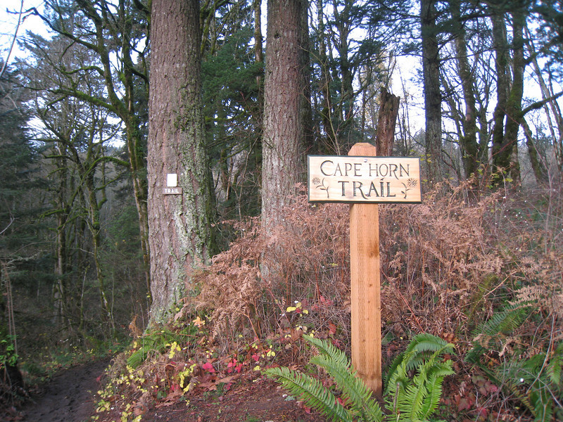 Trail Head <FONT SIZE=1>© Chiyoko Meacham</FONT>