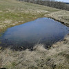 An old livestock watering pond.