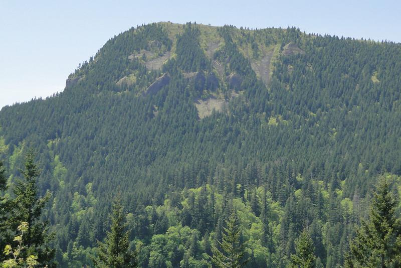 Hamilton Mountain.