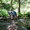 Crossing Cedar Creek. <FONT SIZE=1>© Chiyoko Meacham</FONT>
