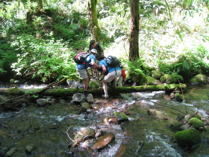 Crossing Cedar Creek. <FONT SIZE=1>© Chiyoko Meacham</FONT>