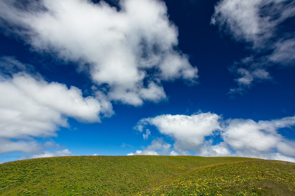 The Columbia Hills