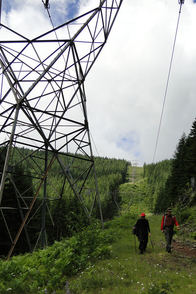 Looking back up the West side power line