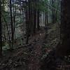 Trail to Canyon Creek Falls