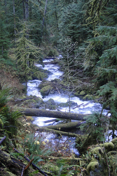 Multnomah Creek.