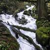 Wahkeena Falls Trail.