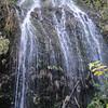 Heading back to Wahkeena Falls.