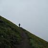 Dog Mountain <FONT SIZE=1>© Chiyoko Meacham</FONT>