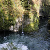 On the diving spot - Punchbowl Falls