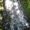 Red Alder Falls<br /> (Munra Creek)