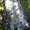 Red Alder Falls<br /> (Munra Creek)