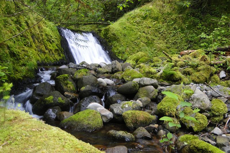 Tenas Creek