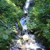 Maiden Hair Falls<br /> (Munra Creek)