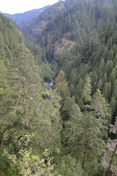 Looking North down Eagle Creek.