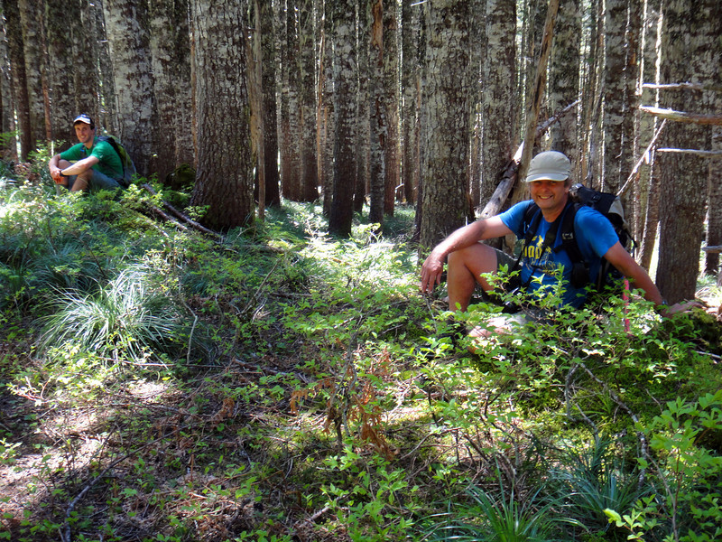 <FONT SIZE=1>© Peder Bisbjerg</FONT> End of the bushwhack as we stumble onto the Tanner Butte Trail!