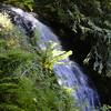 Red Cedar Falls<br /> (Munra Creek)