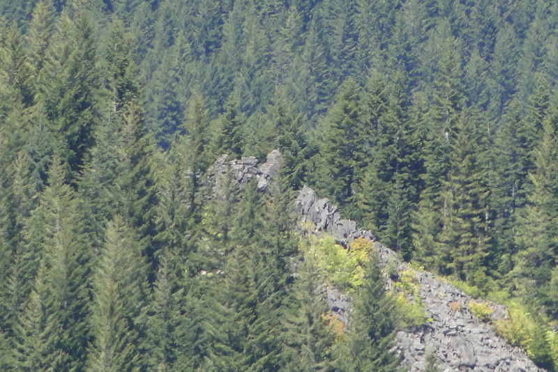 "Zoomed in on the Talus Slope where we <A HREF=""http://guy.smugmug.com/Outdoors-Hikes-Climbs-etc/Columbia-River-Gorge-Hikes/Eagle-Tanner-062012/23608869_FwrxdC#!i=1910093858&k=Xpfb8Xw"">stopped for a break</A>."