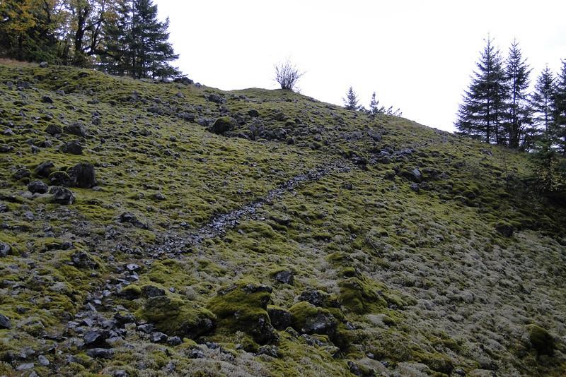 Prindle Trail.