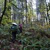 Prindle Trail. <FONT SIZE=1>© Eric Peterson</FONT>