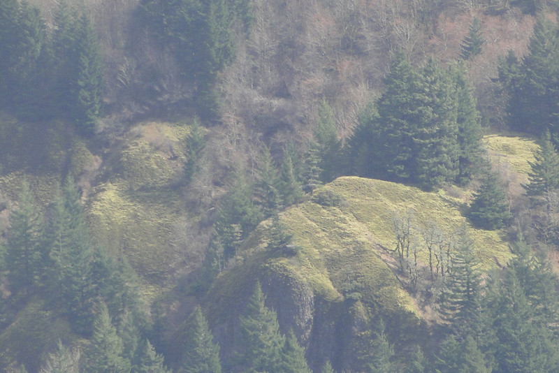 Zoomed in on Scott Point over on Archer Mt.
