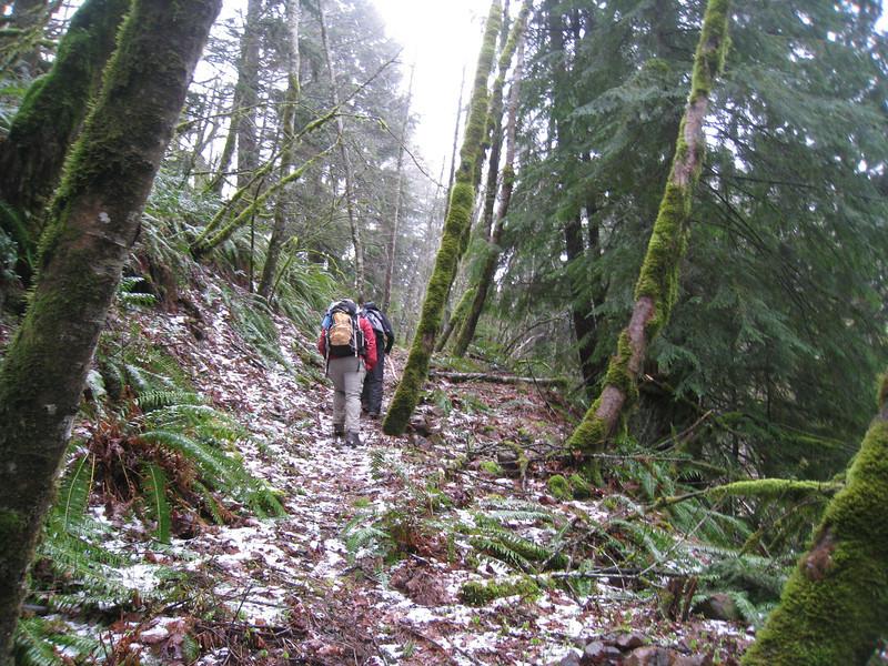 The Hillsberry Trail. <FONT SIZE=1>© Chiyoko Meacham</FONT>
