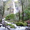 Starvation Creek Falls Star